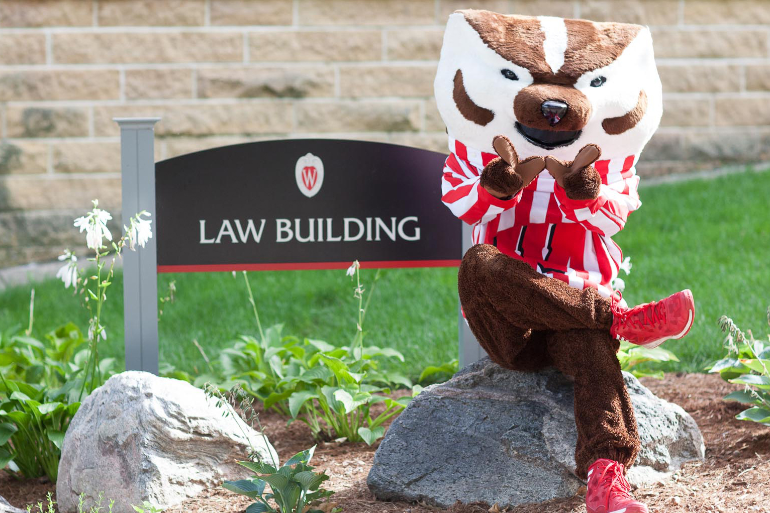 Bucky Badger in front of Law Building sign