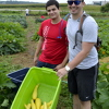 Students volunteer at a local food pantry garden