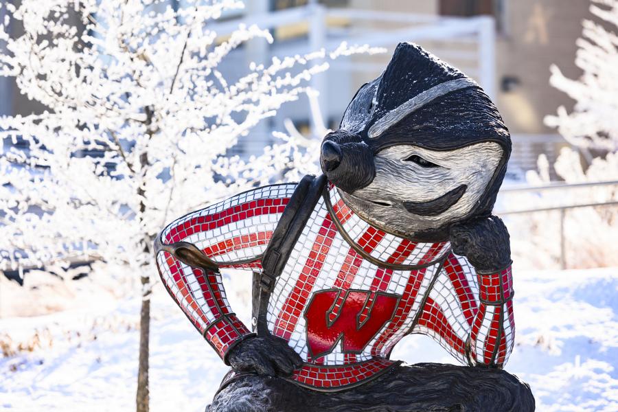 bucky statue in winter
