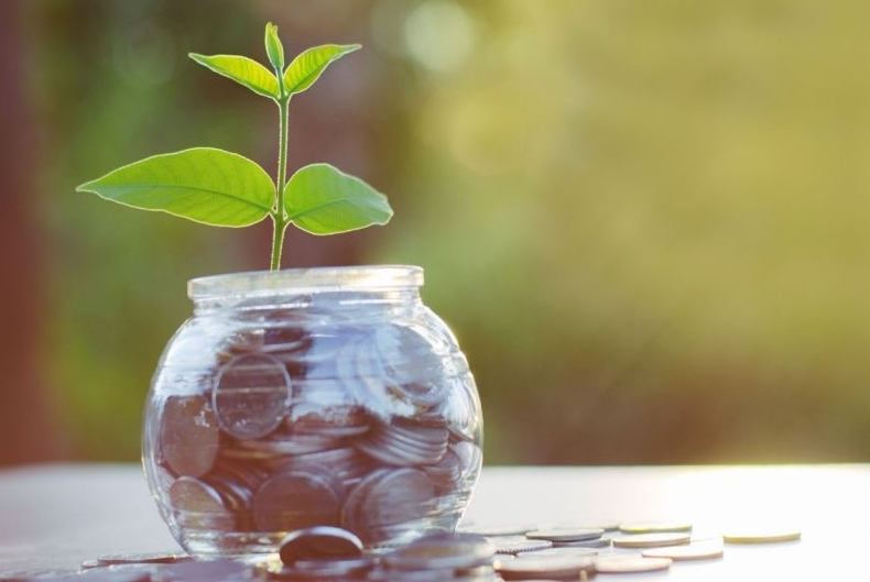 plant growing out of jar with coins
